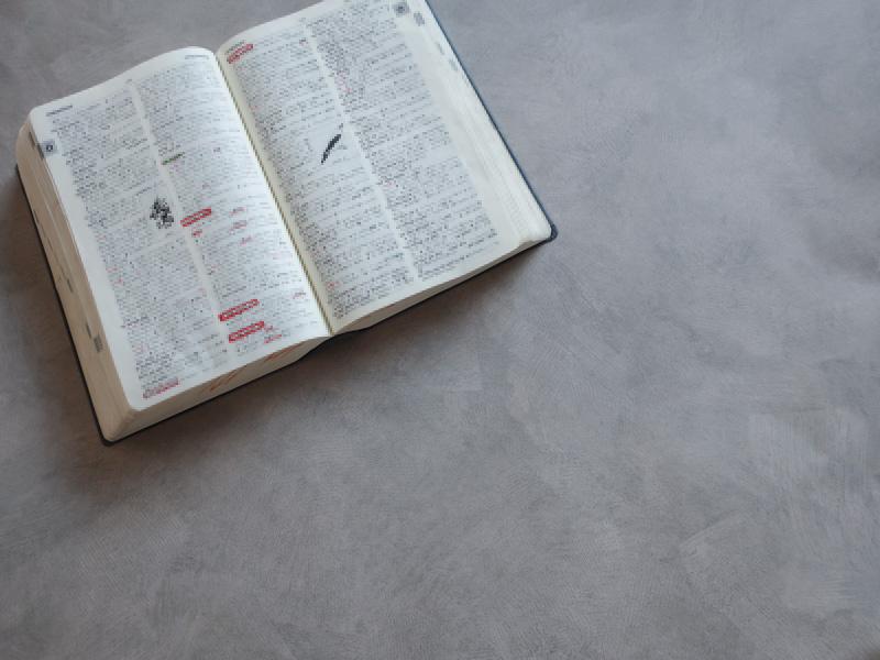 ジーニアス 英和辞典